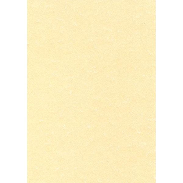 Comprare carta pergamena