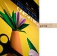 Blister 10fg cartoncino 35x50 220gr panna cartacrea fabriano - Z01310