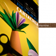 Blister 10fg cartoncino 35x50 220gr marrone cartacrea fabriano - Z01315