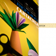 Blister 10fg cartoncino 35x50 220gr onice cartacrea fabriano - Z01318