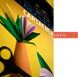 Blister 10fg cartoncino 35x50 220gr arancio cartacrea fabriano - Z01319
