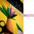 Blister 10fg cartoncino 35x50 220gr rosa cartacrea fabriano - Z01320