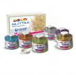 Set 6 barattoli glitter grana fine ml150 colori assortiti art 05404 cwr - Z04622