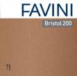 CONF.25 CARTONCINO BRISTOL COLOR 200GR 50X70CM MARRONE 75 FAVINI - Z13063